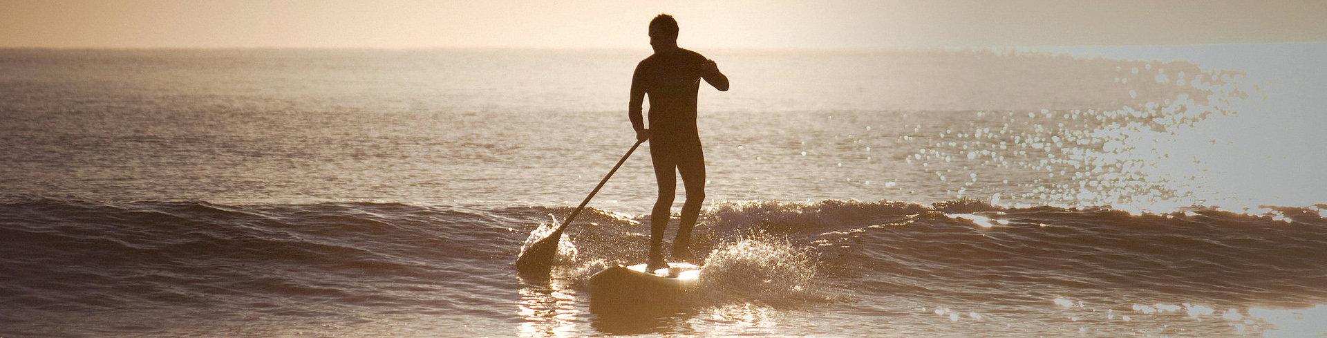 Pano-Surfer.jpg