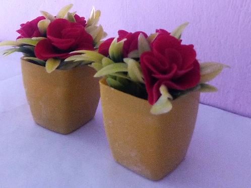 Mini YRed Rose Plant