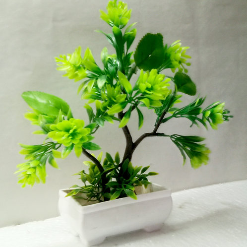 Green Tree Plant