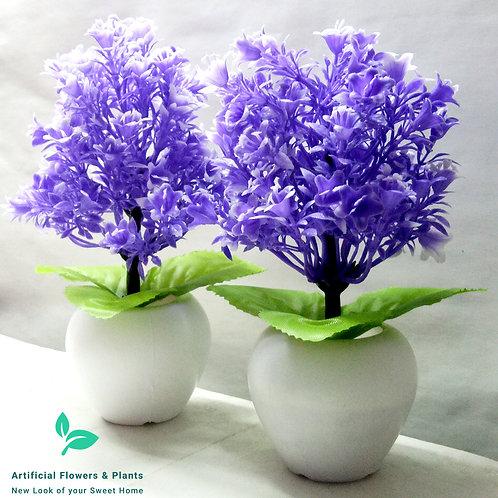 Pair of Blue Tree Plant