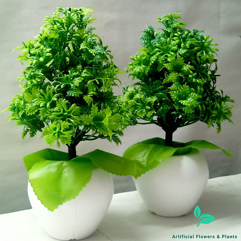 Pair of Green Tree Plant