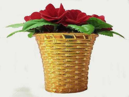 Golden Pot Plant