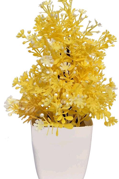 M-Yellow Plant