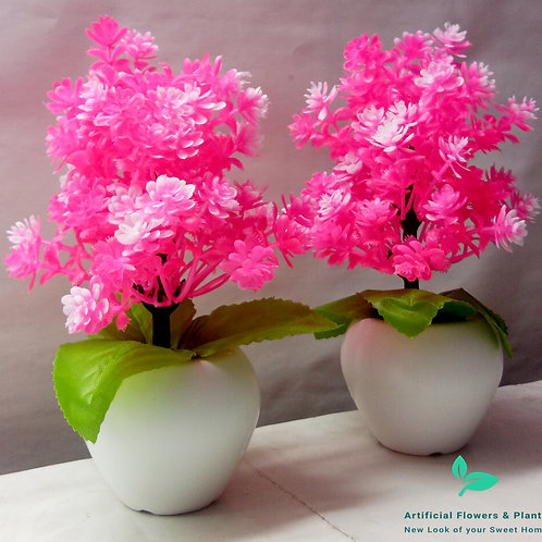 Pair of Pink Tree Plant