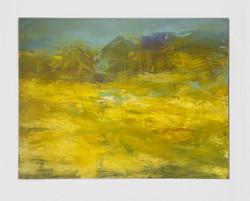 Yellow Fields_150/200_cm
