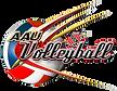 AAU Volleyball northern virginia