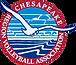Chesapeake Region Volleyball northern virginia