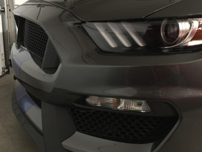 Ceramic Coating a Grey Mustang Shelby GT350. Insane Gloss!