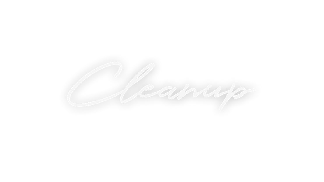 CLEANUP LOGO.png