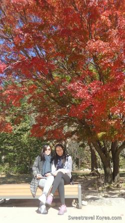 2015-10-29-Philippines - Seoraksan hiking tour-6.png