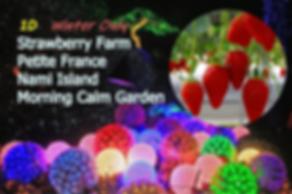1-cover-morning calm garden-festival-2-c
