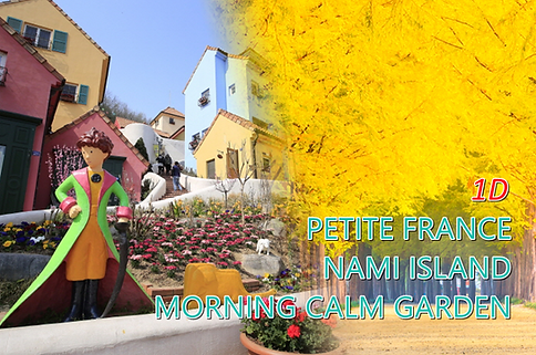 1-cover-nami-petite-morning-tour-1.png