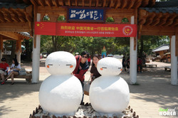 Korea-private-tour-Nami-island10.JPG