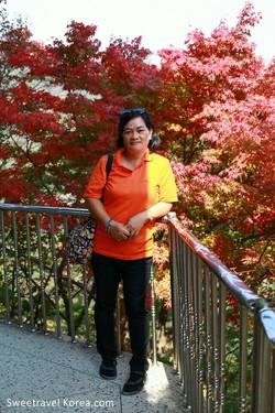 Korea Autumn - Najangsan and Jeonju Tour from Philippines (11)--.jpg