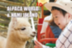 1-cover-alpaca world-nami island-tour.jp