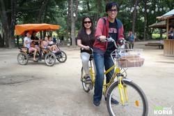 Korea-private-tour-Nami-island8.JPG