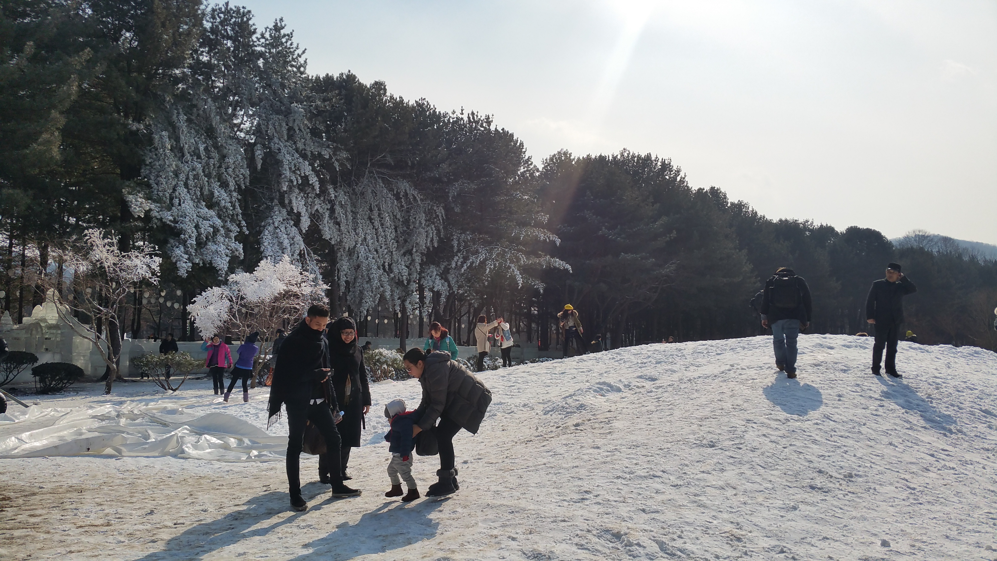 Korea-free-and-easy-Nami-island-korea-tour-guide.jpg