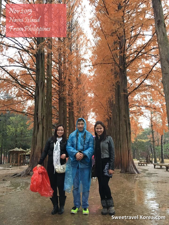 2015-Nov-Nami island-Korea tour review from philippines (3).jpg