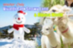 1-cover-snowy land-alpaca world-3-tour.p
