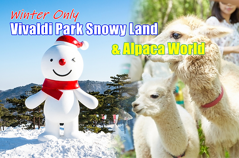 1-cover-snowy land-alpaca world-3-tour.p