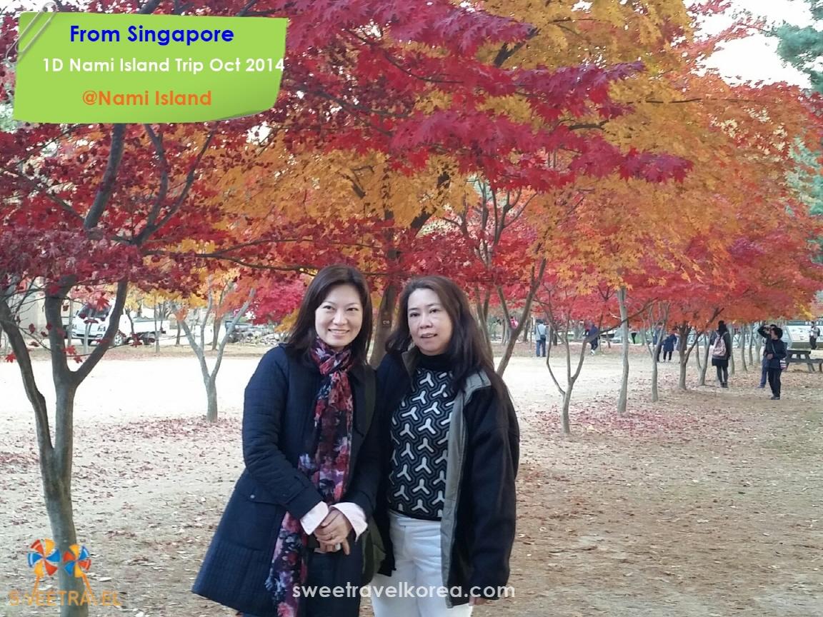 Singapore-Nami island.jpeg