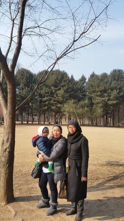 Korea-free-and-easy-Nami-island-korea-private-tour_edited.jpg