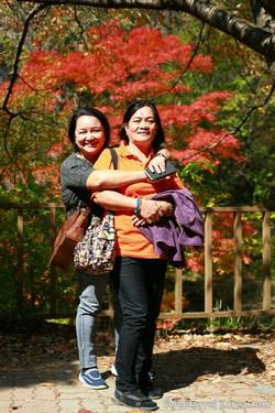 Korea Autumn - Najangsan and Jeonju Tour from Philippines (9)--.jpg