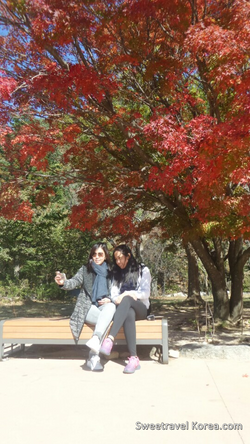 2015-10-29-Philippines - Seoraksan hiking tour-7.png