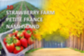 1-cover-strawberry-nami-petite-tour-1.pn