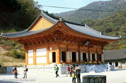 Korea Autumn - Najangsan and Jeonju Tour from Philippines (4)--.jpg