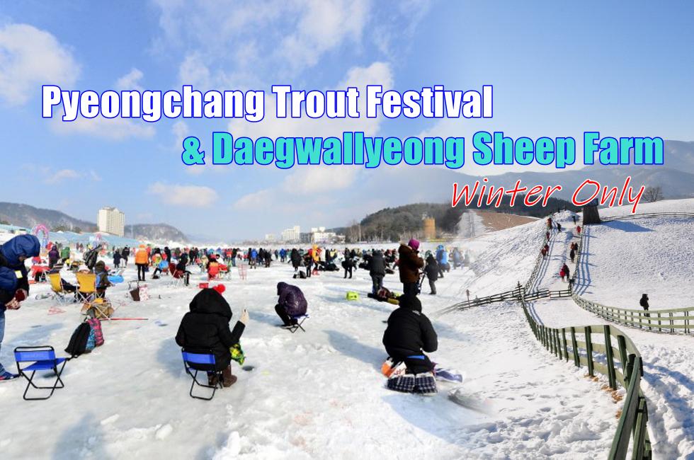 1-cover-pyeongchang trout festival-Daegw