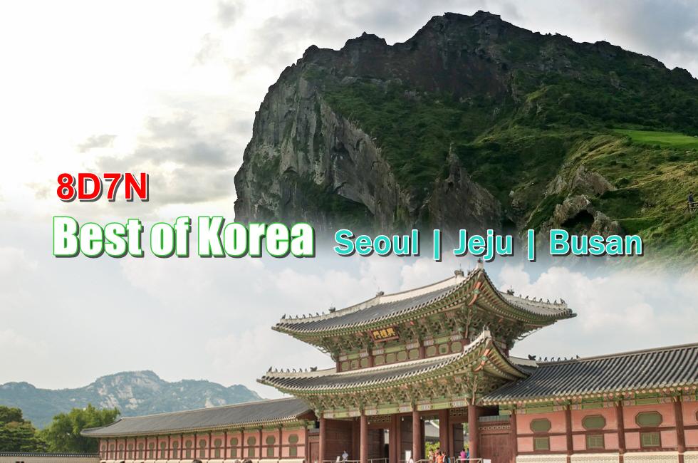 8d-cover-seoul-jeu-busan-tour-1.png