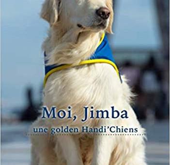 Moi, Jimba une golden Handi'chiens de Margaux Lenormand