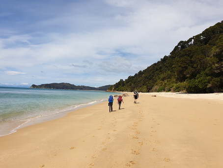 Abel Tasman with the kids.