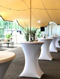 Huizer Vis festijn / Rotary event
