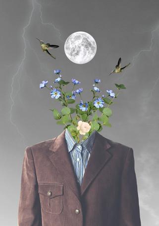 Naturellement fleuri