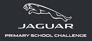Jaguar challenge.PNG