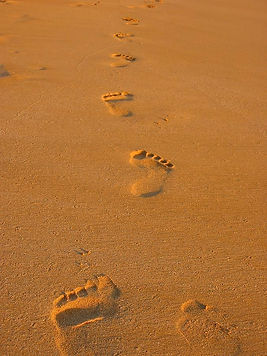 footprints-in-the-sand-andreas-thust.jpg