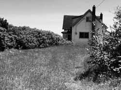 NATURAL AGING OLD HOUSE