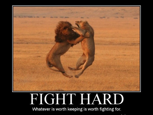 What is UK Fight Club?