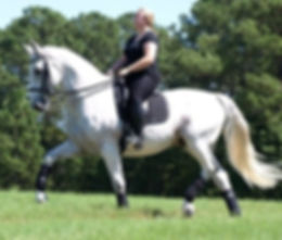 Ashlyn Barnes M.Ed. Dressage Horseback Riding Hobby, Founder/Owner/Tutor of 1 to 1 Math LLC