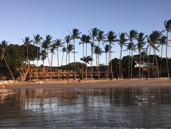 Day 5: Ecotourism in Tamarindo