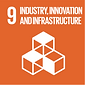SDG-9.png