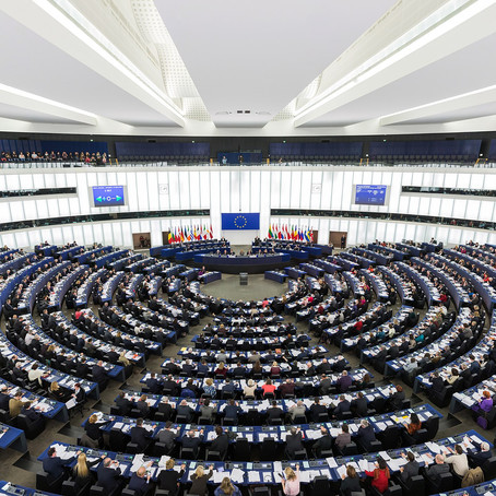 Is climate change on the German agenda for the European Parliament (EP) elections?