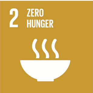 SDG-2.png