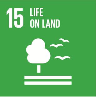SDG-15.png