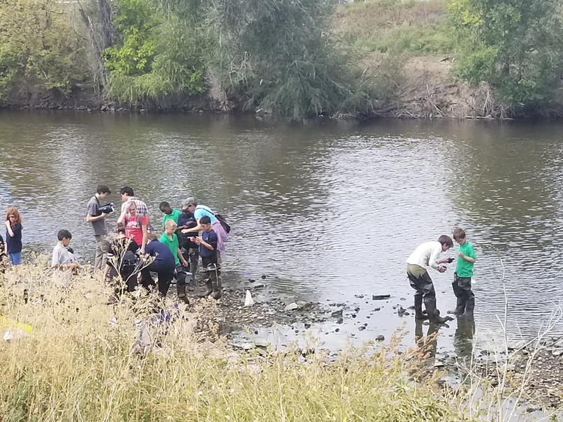 Bioblitz WaterQuality 2018-09-24 -6.jpeg