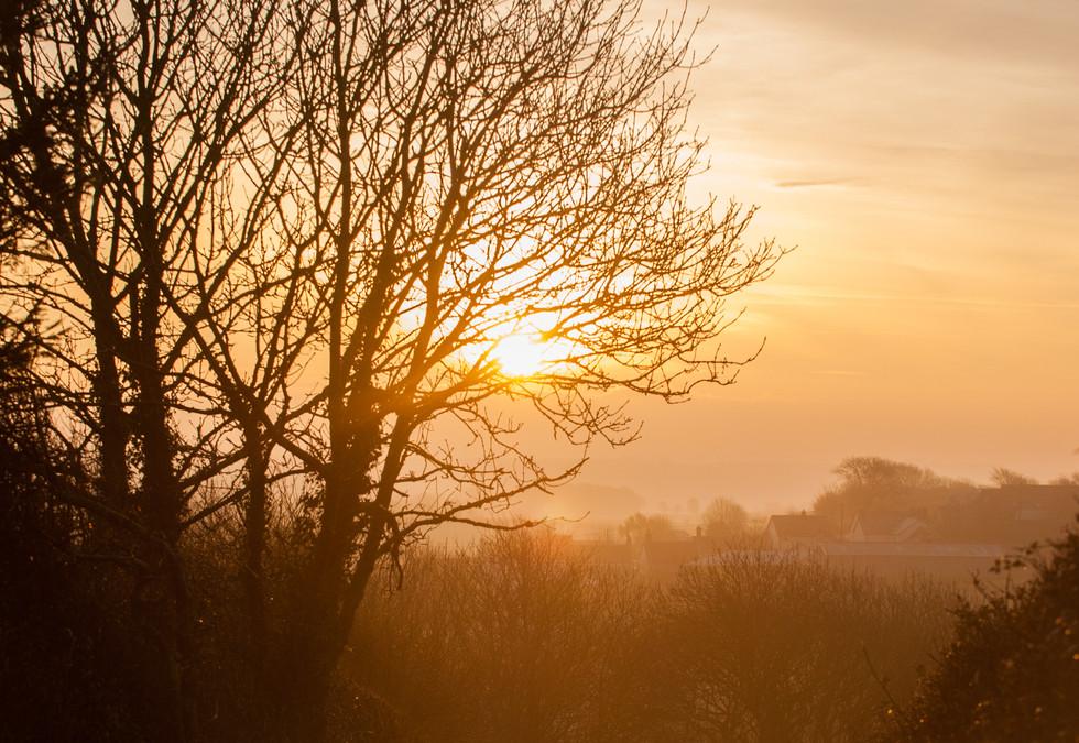 Sunrise Devon-1.jpg