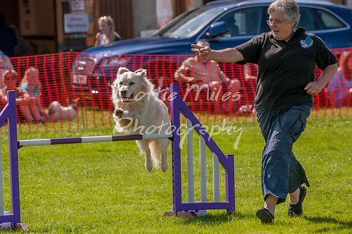 Dartmoor DTS Merton Show-76
