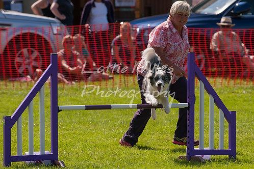 Dartmoor DTS Merton Show-91